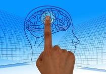 Ответ на сложнейший вопрос современности о том, что такое сознание, или душа человека, похоже, нашел профессор факультета здоровья и медицинских наук Университете Суррея (Великобритания) Джон Джо Макфадден
