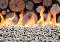 В прошлом году Бурятия чаще продавала за рубеж топливо и древесину