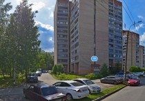 Без вести пропавший мужчина избил прохожего на севере Петербурга