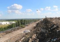 Внесение изменений в ПЗЗ дает надежду на окончательное закрытие «Лесной»