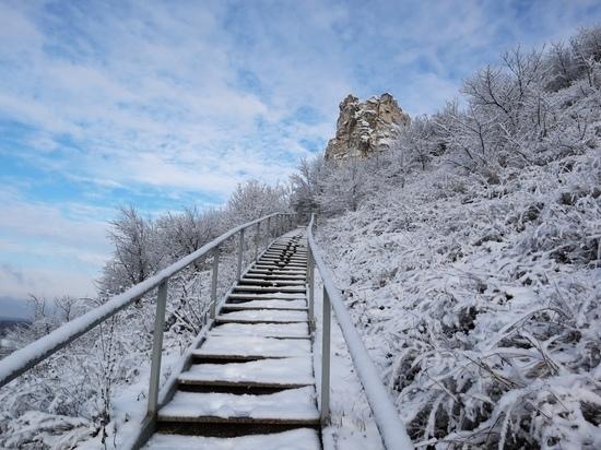 Заповедник  «Дивногорье» в Воронеже будет проводить экскурсии зимой