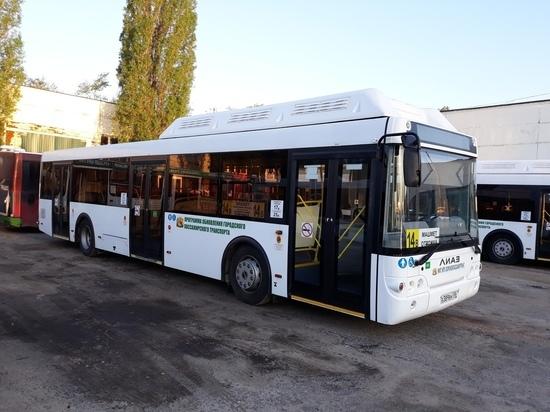 На улицах Воронежа появятся более 60 новых низкопольных автобусов