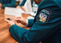 В Костромской области самозанятых граждан могут освободить от налогов на два года