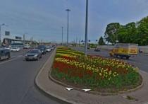 На площади Александра Невского высадили 10 тысяч тюльпанов