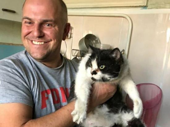 Пятнадцатилетняя кошка Маруся, или как ее еще называют в семье Бодрая пенсия, пролетела два этажа внутри законсервированного мусоропровода в сталинском доме и осталась жива