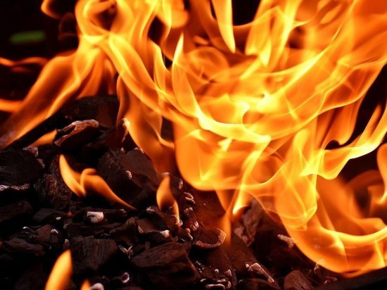 Пожар уничтожил дачный дом в Гдовском районе