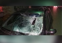 В Скопине женщина на «Рено» сбила пешехода на «зебре»