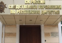 Жителю Дагестана грозит 20 лет за ИГИЛ