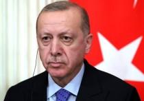 «Заклятый друг» нашей страны Реджеп Эрдоган выкатил России вежливый ультиматум, заявив о наличии некой красной линии, которую Москва не имеет права переступать на Кавказе