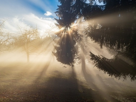Туманное утро обещают псковские синоптики 30 октября