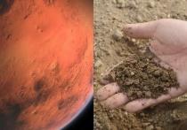 Марсианский грунт проверили на плодородные качества