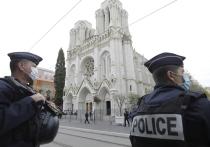 Очередной теракт во Франции - вооруженный ножом преступник убил троих человек, одна из жертв террориста обезглавлена - вновь ставит вопрос о способности современного государства обеспечить безопасность своих граждан