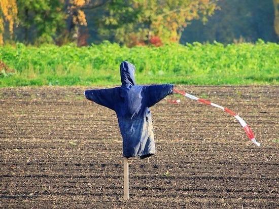 В Воронеже сожгут скульптуру коронавируса