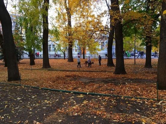 Синоптики рассказали, каким в Саратовской области будет ноябрь