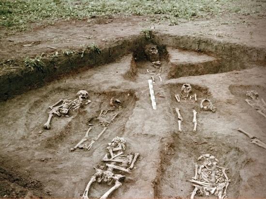 Ученые рассказали, что ели и от чего умирали туляки в XII веке