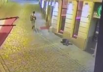 В МВД Австрии сообщили, что теракт в Вене