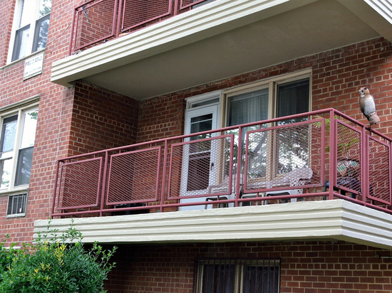 Германия: Что должен оплачивать квартиросъемщик