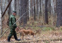 Сезон охоты стартовал на Кубани