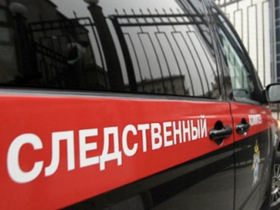 Полицейский в Пскове разорвал подозреваемой в краже барабанную перепонку