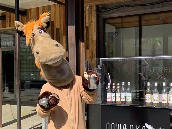 Красноярский бар «Лошадка» приостановил работу из-за ограничений по коронавирусу