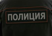 На активисток Pussy Riot составили протоколы за отсутствие масок