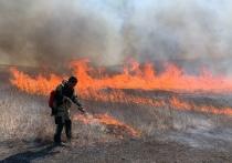 Добровольцы-пожарные Забайкалья взяли серебряную лопату на фестивале РФ