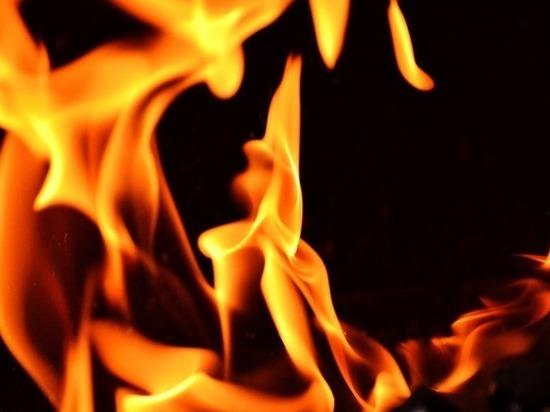 Сторож сгорел в бытовке в Тоншаевском районе