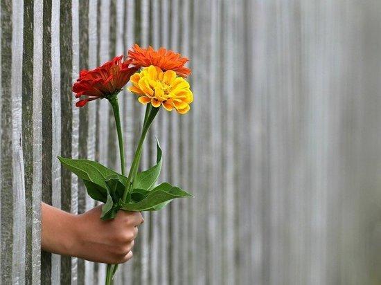 Воронежца приговорили к исправительным работам за кражу цветов для возлюбленной