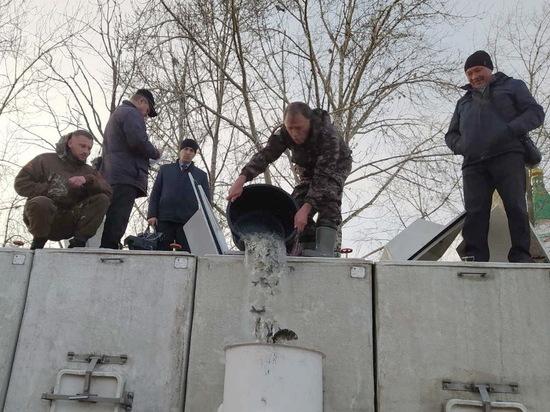 В Чебоксарах выпустили в Волгу 30 тысяч мальков промысловых рыб