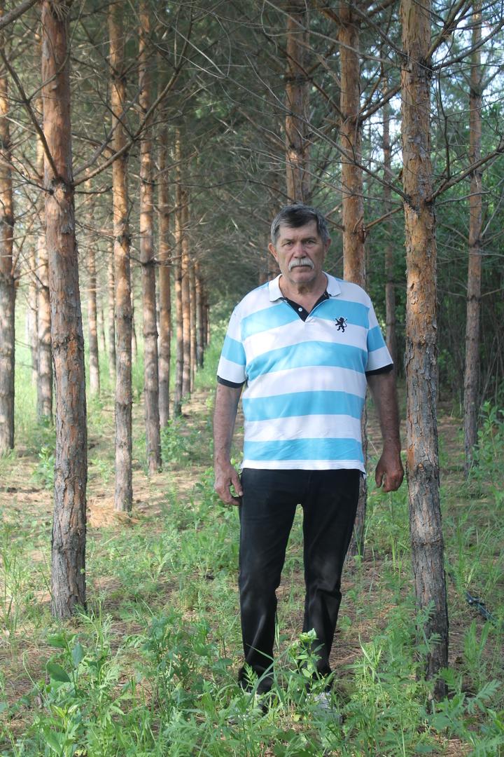 В память о 120 чернобыльцах Волгоградец высадил сосновый бор , фото-2