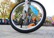 «Умные» шлагбаумы защитят велотерренкур от автомобилей