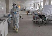 Главный врач московской больницы №71 и телеведущий Александр Мясников в своем Telegram-канале раскритиковал публикацию подсчета смертей от коронавируса