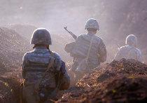 В Нагорном Карабахе нашли экзотических бойцов
