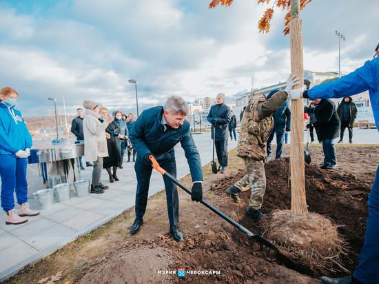 Олег Николаев принял участие в озеленении Красной площади Чебоксар