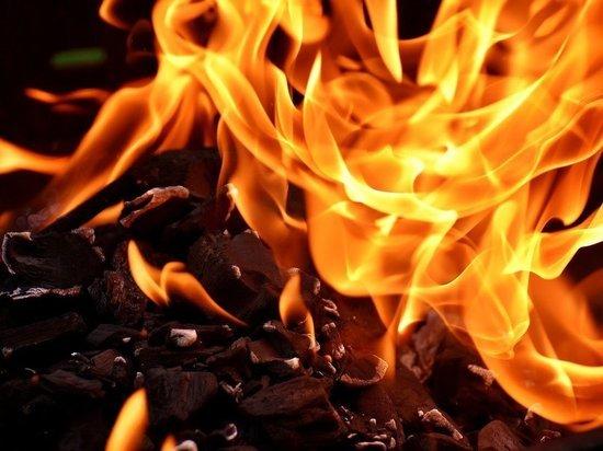 Автомобиль «Фольксваген Пассат» сгорел в Псковском районе