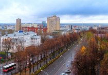 В Перми прошли публичные слушания по проекту бюджета на 2021 и плановый период 2022 и 2023 годов