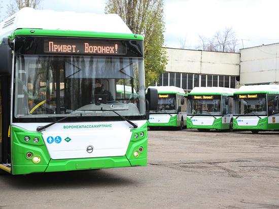 Новые пассажирские автобусы должны выйти на  улицы Воронежа  в начале декабря
