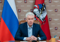 Собянин отменил массовые новогодние гуляния в Москве