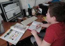 Впервые в этом учебном году в Костромской области целая школа перешла на «дистанционку»