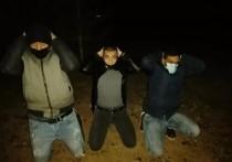 Трех африканцев, направляющихся во Францию, поймали на псковской границе