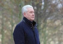 Собянин решил не запрещать москвичам гулять в новогоднюю ночь