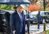 Дональд Трамп добился первого крупного успеха в кампании по проверке честности выборов президента США 2020