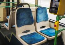 Неизвестная маслянистая жидкость, разлитая на сидении в автобусе, возможно, стала причиной ожога, который получила 22-летняя жительница Шатуры