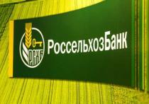 Россельхозбанк: объем инвестиций в крупнейшие инвестпроекты в сегменте зерновых в РФ превысит 300 млрд рублей до 2030 года