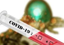 В Новом Уренгое педагогов школ и детсадов будут регулярно проверять на COVID-19