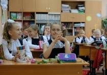 Вторая учебная четверть начинается в школах Новосибирска с 16 ноября