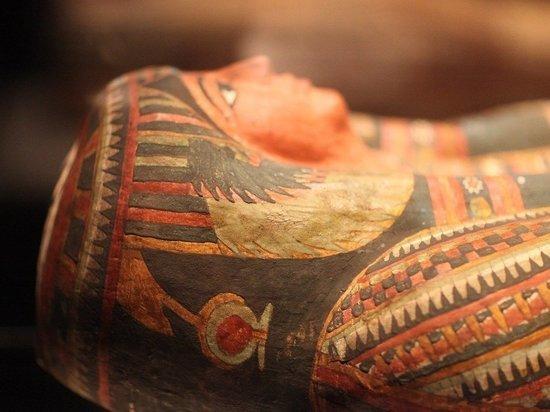 В Египте нашли 100 саркофагов возрастом свыше 2,5 тысячи лет