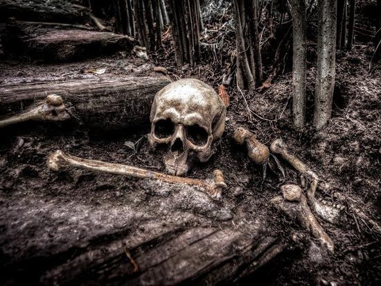 В Иркутской области дорогу посыпали песком с человеческими черепами и костями
