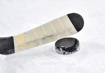 Юные новосибирские хоккеисты победили в общероссийском турнире в Москве