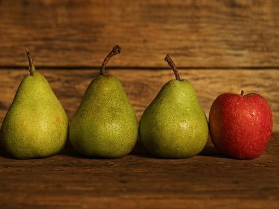В Кирове раздавили более тонны яблок и груш